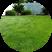 lawn mowing testimonial icon